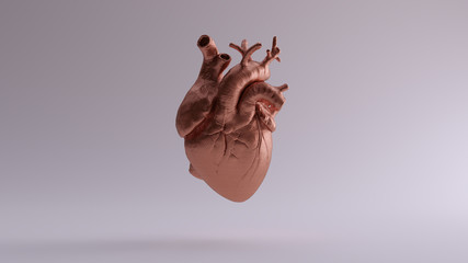 Copper Heart Anatomical 3d illustration 3d render