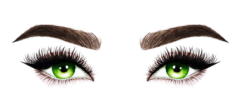Woman eyes with long eyelashes. Hand drawn watercolor illustration. Eyelashes and eyebrows. Design for eyelash extensions, microblading, mascara, beauty salon, cosmetics, makeup artist. Green eyes.