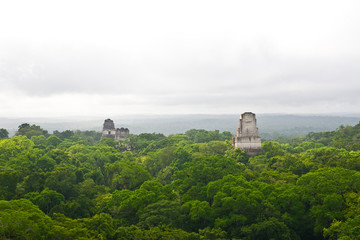 Aerial view over jungle around Mayan temples in Tikal, Guatemala, Central America
