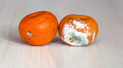 Mandarins spoiled and worse with mold
