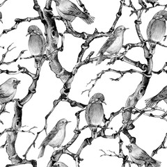 Deurstickers Art Studio Watercolor winter vintage botanical seamless pattern, Birds twigs and branches.