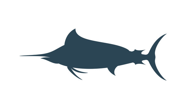 Marlin silhouette. Isolated marlin on white background