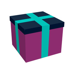 Box Christmas  present vector