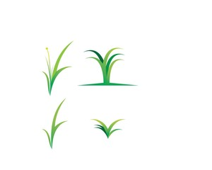 grass of ecology icon illustration