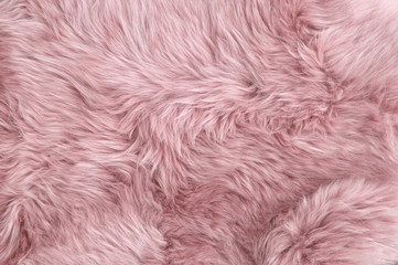 Pink sheep fur Natural sheepskin background texture Wall mural