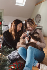 Two roommates playing with their kitten at Christmas time