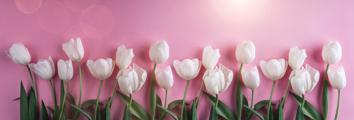 White tulips flowers over light pink background. Greeting card or wedding invitation. Flat lay, top view, copy space. Wide composition