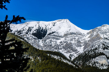Mountains and trees starting their early spring thaw from Barrier Lake, Bow Valley Provincial Park, Alberta, Canada