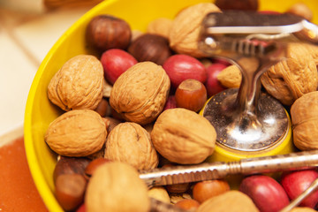 Walnuts in Bowl, Chestnuts, Healthy Snacks