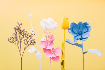 Different flowers colored on yellow background.