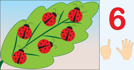Ladybugs. Number 6 (six). Learning counting, mathematics. Education for kids. Vector illustration.