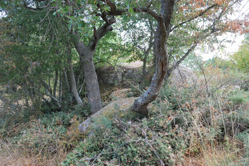 Beglik Tash-megalithic sanctuary, Bulgaria