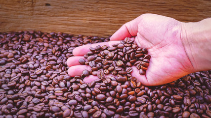 Dried coffee beans on the palm of the man by the background blurred dry coffee beans.