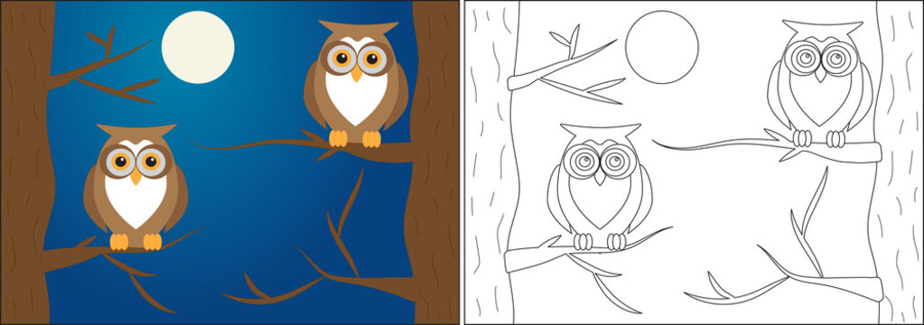 Coloring book for children. Owls on branches of trees at night, cartoon. Vector illustration.