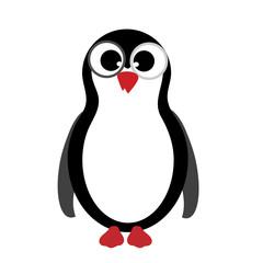 Vector illustration of penguin on white background.