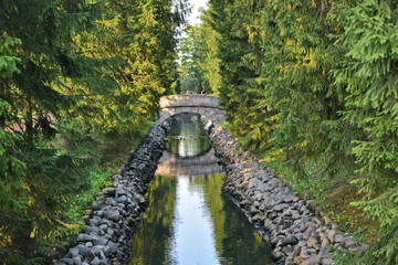 Old round stone bridge under which a flock of ducks swim fed by people in the coniferous forest over a long narrow ditch with blue water between the stone walls in a beautiful city garden