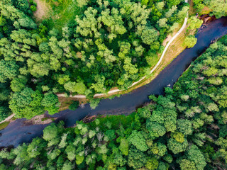 Aerial top down view of summer forest with Vilnele river winding among the trees.