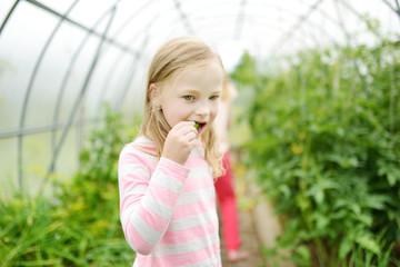 Adorable little girl eating fresh organic cucumber in a greenhouse on summer evening