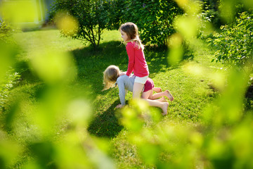 Two cute sisters fooling around together on the grass on a sunny summer day. Children being silly and having fun.