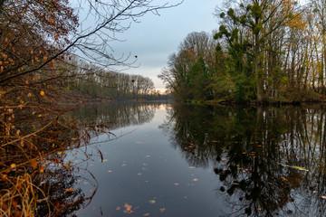 Paysage au bord d'un étang le matin en automne avec les arbres se reflétant dans l'eau dans l'Est de la France