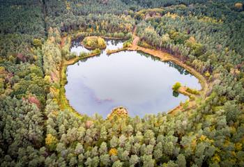 Schöner, kleiner Angelsee mitten im bunten Herbstwald, Luftbild