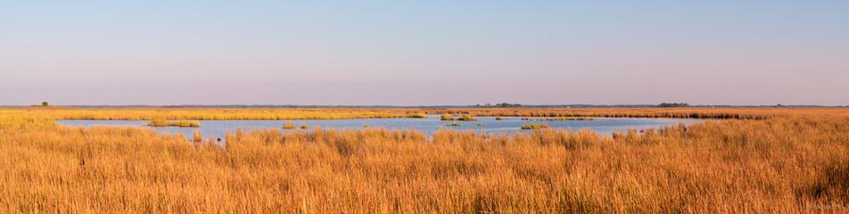 Marsh Pano