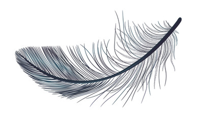 Feather, fluff, fuzz is a black vector, realistic 3d. Gothic.