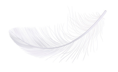 Feather, fluff, fuzz is a white vector, realistic 3d. Pooh, lightness, airiness.