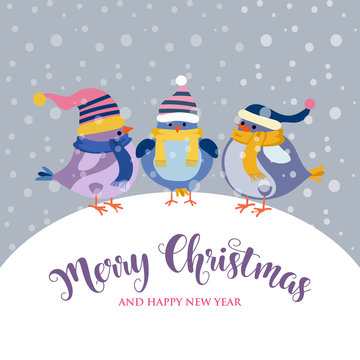 funny Christmas card with birds