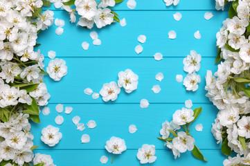 Spring blossom on blue wood