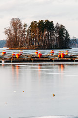 Frosty Winter Landscape