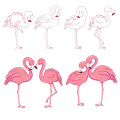 Sketched flamingos vector