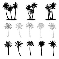 Vector palm tree silhouette icons on white background.