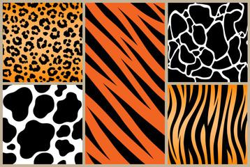 Print set safari jungle animal fur stripe animals bengal tiger giraffe texture pattern white black orange
