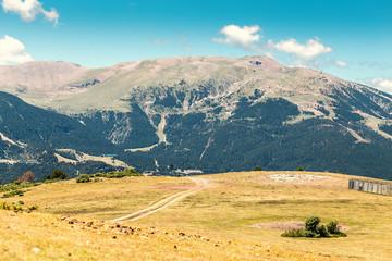 Alpine meadow landscape in mountains