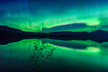 Fototapete - Northern Lights Over Lake