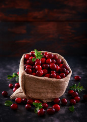 Cranberries in Burlap bag. Freshly picked, organic, rustic style.