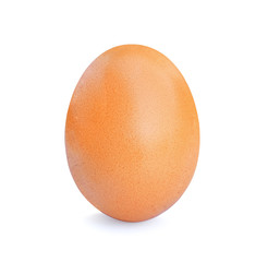 egg on white background