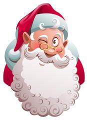 Santa Claus head winks. Merry Christmas fun vector