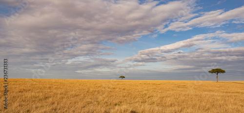 Masai Mara Wallpaper Stock Photo And Royalty Free Images On