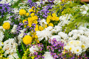 Mixed flowers; yellow cosmos, white orchid, marigold to be arranged in one zone., Thailand.