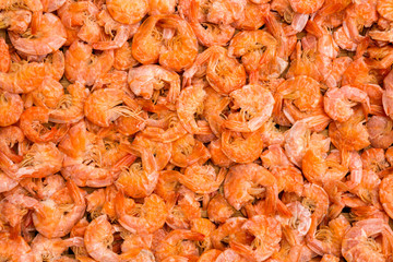 Pattern of dried shrimp for background.