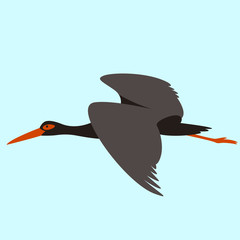 black heron flying , vector illustration , flat style