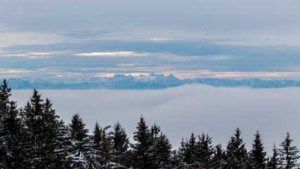 Aluminium Prints Berge im Hintergrund