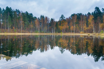 Reflection of a forest in a quiet lake