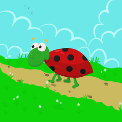 ladybug in the meadow - vector  illustration, eps