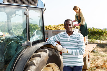 Worker posing near tractor at vineyard