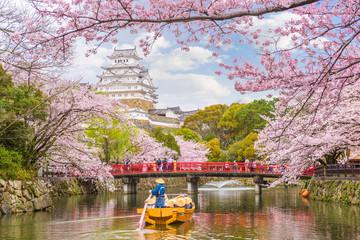Foto op Canvas Kersenbloesem Himeji Castle, Japan in Spring