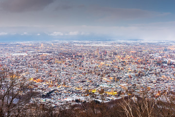 Wall Mural - Sapporo, Japan winter skyline