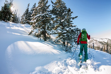 Male skier freeride skitur uphill in snow in winter forest